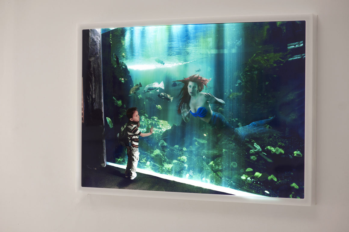 Ariel LED Light Box