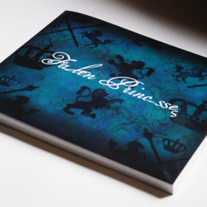 The Fallen Princesses book is a collection of essays, published pieces, interviews, online conversations, project secrets and anecdotes about the project.