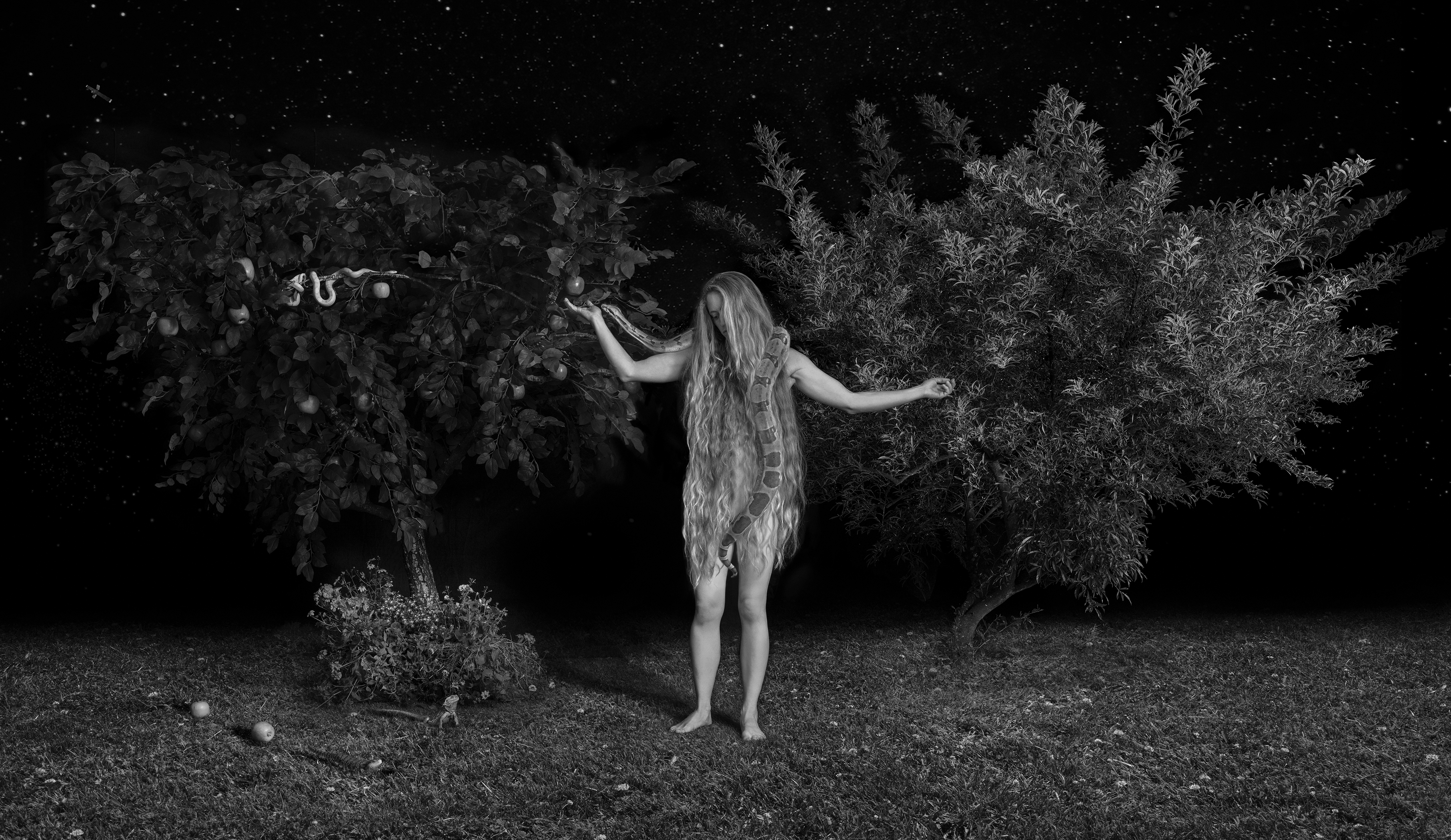 Snapshots from the Garden of Eden - Dina Goldstein